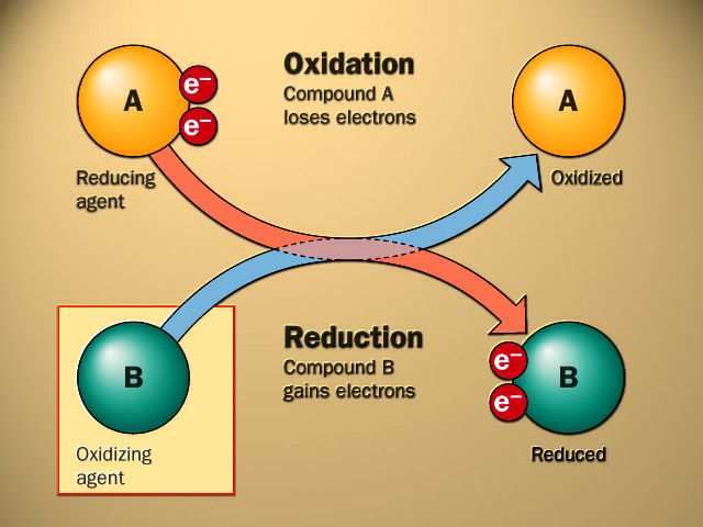 chemistry redox reactions explained essay Chemical reactions are represented by balanced chemical equations, with  a unified approach to the study of chemical reactions in freshman chemistry.
